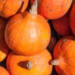 Velouté d'automne à la citrouille, au fromage et à la cardamome